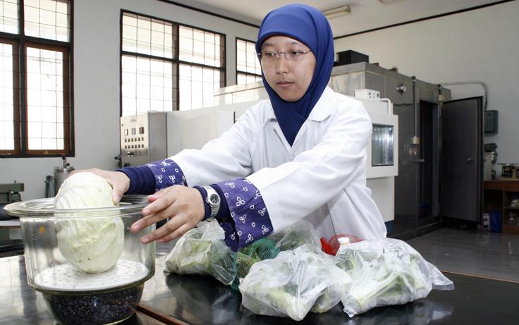 fakultas teknologi industri pertanian